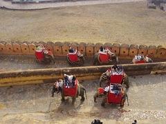 elephant_taxi_Jaipur.jpg